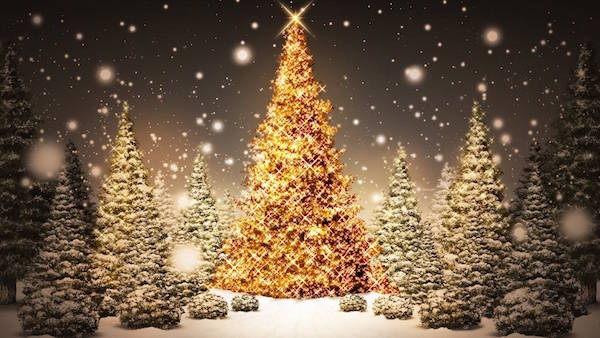 Impressive Free Christmas Tree Backgrounds Best Resume Collection - Best Christmas Moment